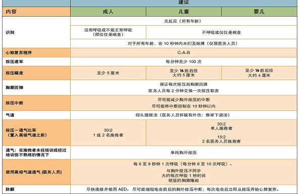 心肺复苏操作标准 嘉大公司2012